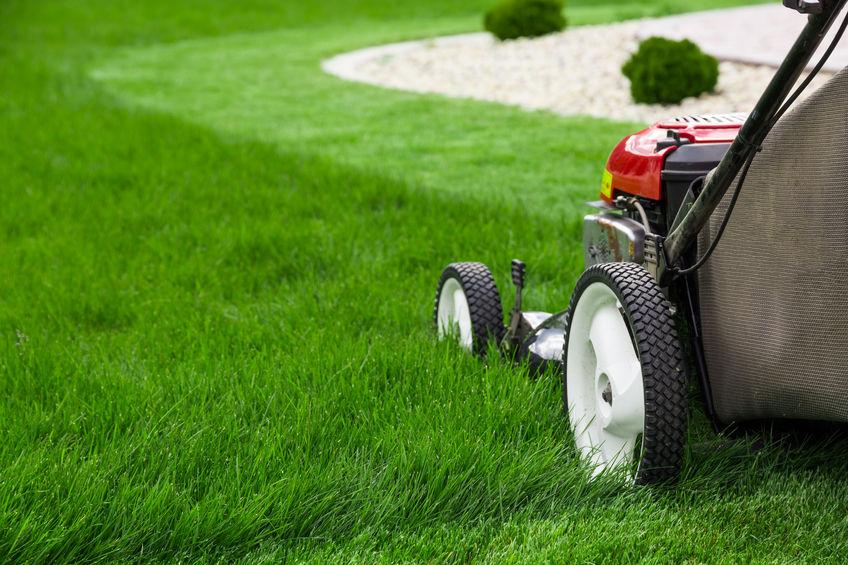 Tartsa rendben kertjét rendszeres fűnyírással!